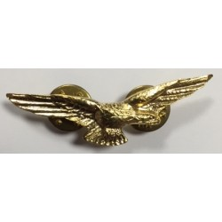 Brooch Patent Civil Pilot